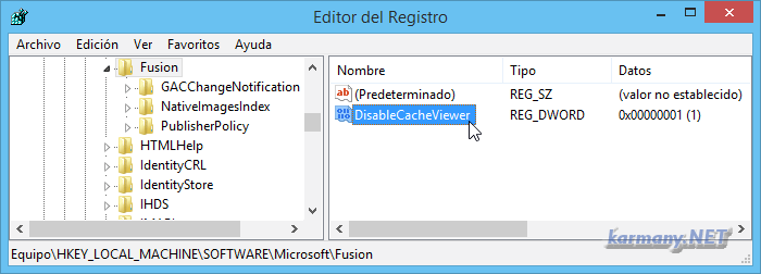 Registro de Windows, DisableCacheViewer